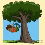 jongeman valt uide boom